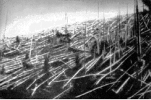 Fallen trees after the explosion, taken in 1927 by Leonid Kulik's expedition to the area