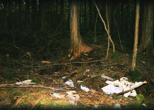 A place in the forest where a noose was found, along with a bag and cut-up credit cards. (Source: http://lookingforalosea.blogspot.com.au/2010/11/aokigahara-forest-suicide-forest-japan.html)